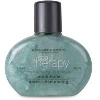 Hiushoito 30 ml Spa Therapy