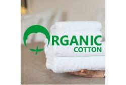 Pyyhe ORGANIC 50*70 cm valkoinen